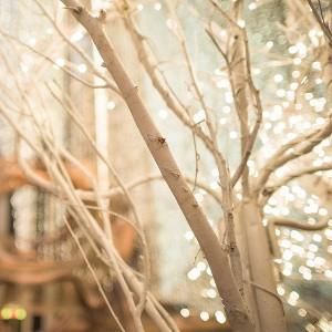 winter-lights